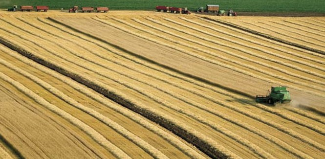 Конкурс за коришћење подстицаја за подршку инвестицијама у примарну пољопривредну производњу у 2013.години