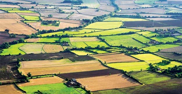 Oglas za javnu licitaciju za davanje u zakup poljoprivrednog zemljišta u državnoj svojini u Opštini Golubac