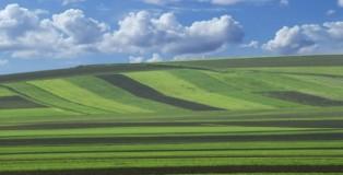 poljoprivredno-zemljiste-1024x768_1