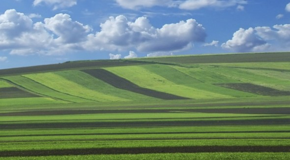Javni poziv za dokazivanje prava prečeg zakupa poljoprivrednog zemljišta