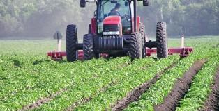 objavljen-pravilnik-o-podsticajima-za-podrsku-investicijama-u-primarnoj-poljoprivrednoj-proizvodnji