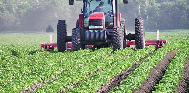 Jефтинији кредити за пољопривреднике – камата 3 одсто